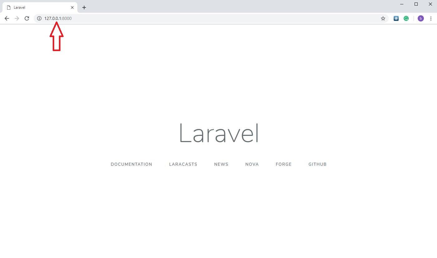 laravel-face